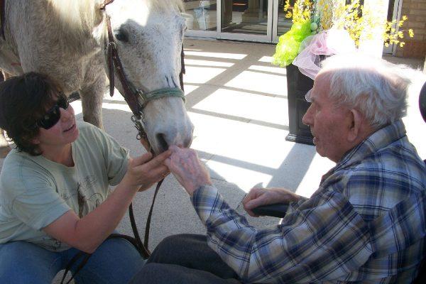 Huronlea - Horses